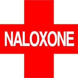 Go To Naloxone Portal